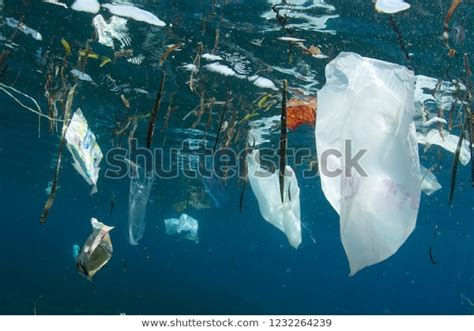 Plastic Bags Other Trash Littered Into Stock Photo (Edit