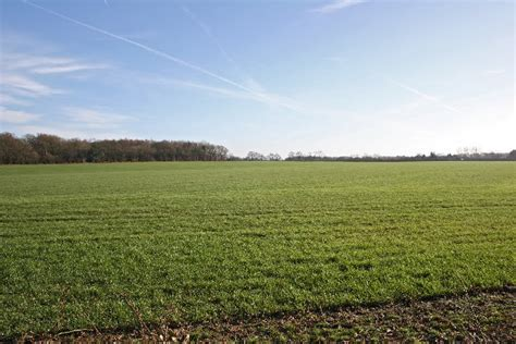 2000 Hecters Of Farm Land For Sale In OGUN State (Nigeria